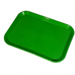 16 Inch - Serving Platter - Rectangular shape Large Tray - Made of Premium Plastic  - Green Color