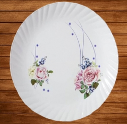 12 Inch - Dinner Plates - Made Of Food-Grade Regular Plastic Material - Round Shape - Printed Plate