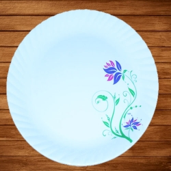 12 Inches Dinner Plates - Made Of Food-Grade Virgin Plastic Material; Round Shape - White Printed Plate
