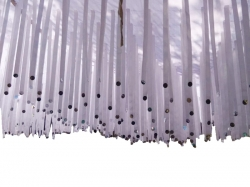 10 X 15 Ribbon Ceiling  / Satin Fabric Ribbon with Taiwan Cloth - Tikli Work - White Color