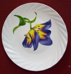 7 Inches / Dinner Plates / Made Of Food-Grade Plastic Material / Round Shape / White Printed Plate
