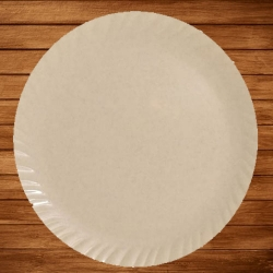 12 Inch - Dinner Plates - Made Of Food-Grade Virgin Plastic Material - Round Shape - Peach Plate