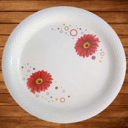 12 Inch Dinner Plates - Made Of Food-Grade Regular Plastic Material - Round Shape - Color White & Printed.