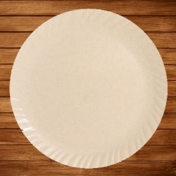 13 Inches Dinner Plates - Made Of Food Grade Virgin Plastic - Peach Color