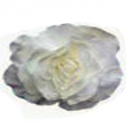 7 INCH - Artificial Foam Flower - White Color - (Available in 7,11,15,19, 23 INCHES)