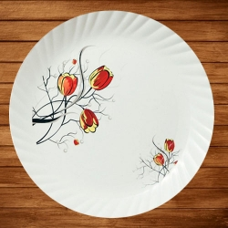 12 Inch Dinner Plates - Made Of Food-Grade Regular Plastic Material - Leher Round Shape - Printed Plate.