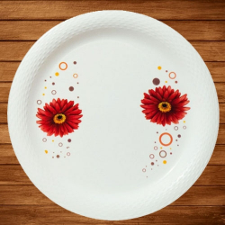13 Inch - Bonchina Dinner Plates - Made Of Food-Grade Virgin Plastic Material - Round Shape - White Printed Plate