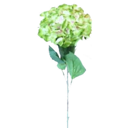 Height - 34 Inch - Hydrengea Flower Stick - Artificial Stick - AF- 305 - Stick - Light Green Color
