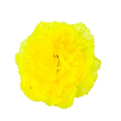 4 Inch - Loose Flower - Artificial Flower - Ceiling Flower - Flower Decoration - Yellow Color