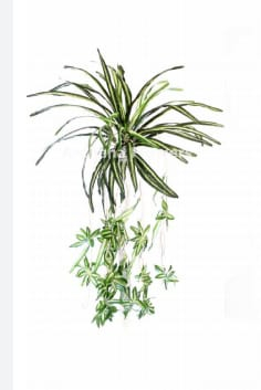 24 Inch  Artificial Wall Hanging - Flower Decoration - Green Color