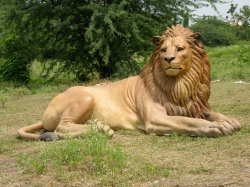 Fiber Lion Statue - Lion - Indoor & Outdoor - Made of Fiber