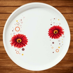 11.50 Inch Second Quality - Dinner Plates - Made Of Food-Grade Regular Plastic Material - Round Shape - Printed Plate