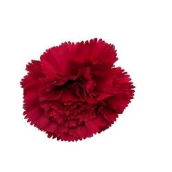 3 Inch - Loose Flower - Artificial Flower - Ceiling Flower - Flower Decoration - Brown Color