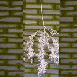 Height - 36 Inch - Artificial Hanging - Latkan - Flower Decoration - Artificial - AF 116 - Multi Color