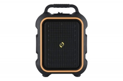 Professional MUSE 61 Portable PA System 15W RMS with in-Built USB - SD-MMC Media Player - Recorder and Bluetooth