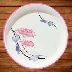 12 Inch Dinner Plates - Made Of Food-Grade Regular Plastic Material - Round Shape - Printed Plate