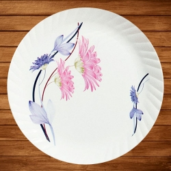11.5 Inch - 145 Gm - Dinner Plates - Made Of Food-Grade Regular Plastic Material - Leher Round Shape - Printed Plate.
