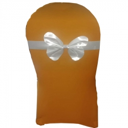 Skin Feeding Chair Cover & Bow Patti Imported Lycra - Chair Cover