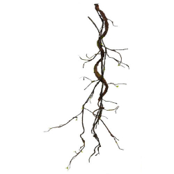 55 Inch Artificial Roots - Flower Decoration - AF - 389 - Brown & Green Color