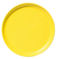 8 Inch Quarter Plate..