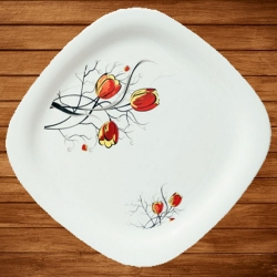 11.50 Inch Dinner Plates - Made Of Food-Grade Regular Plastic Material - Square Shape - Printed Plate