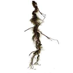 71 Inch Artificial Roots  - Flower Decoration - AF - 244 - Brown & Green Color