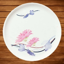 12 Inch Dinner Plates - Made Of Food-Grade Regular Plastic Material - Round Shape - Printed Plate.