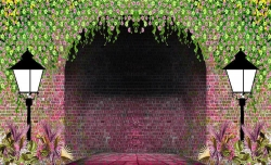 10 FT X 15 FT - 3D Print Mandap Parda - Printed Designer - 14 KG Taiwan Cloth - Multi Color