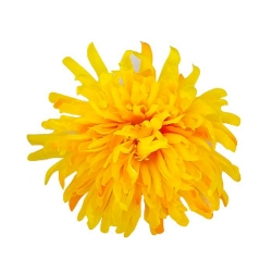 5 Inch - Loose Flower - Artificial Flower - Ceiling Flower - Flower Decoration - Yellow Color