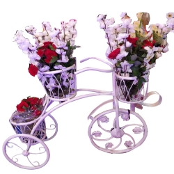 2.5 FT - Flower Stand - Cycle Stand - Plant Container - Made of Iron