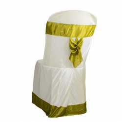 Lycra Cloth Chair Cover Without Handle - For Plastic Chair - Armless - White With Parrot Green Bow
